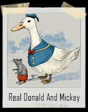 The Real Donald And Mickey T-Shirt