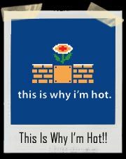 This is Why I'm Hot Mario Bros. Fire Flower T Shirt
