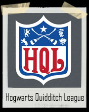 Hogwarts Quidditch League NFL Style Harry Potter T-Shirt