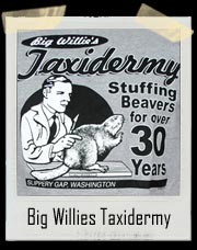 Big Willies Taxidermy - Stuffing Beavers for over 30 years T Shirt!