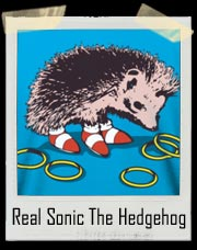 The Real Sonic The Hedgehog T Shirt